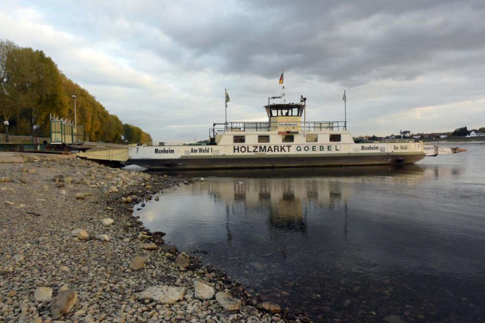 Am Rhein ist der Pegel seit Monaten sehr niedrig, schränkt die Schifffahrt stark ein.