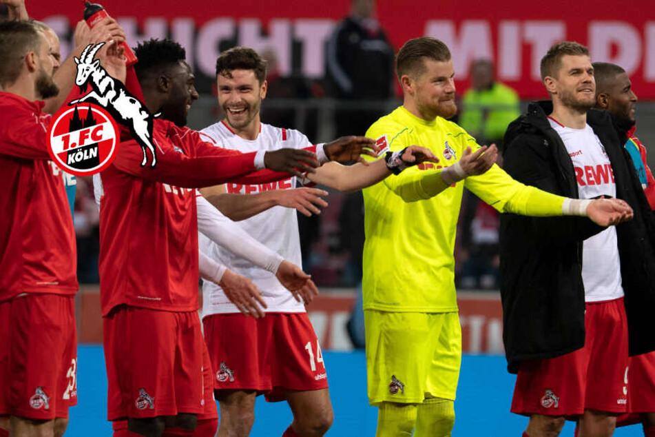 1. FC Köln dreht auf: Kampfansage an Mönchengladbach und die Bayern!