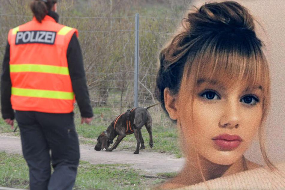 Vermisste Rebecca: Blieb die Suche mit Hunden erneut erfolglos?