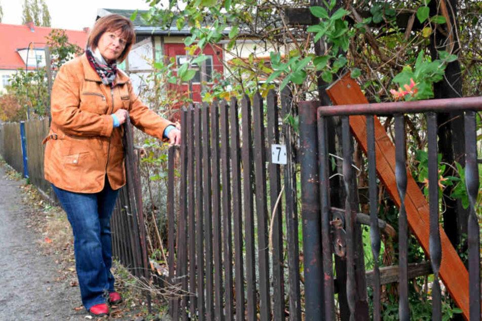 Annett Heide (56), Vorstandsvorsitzende des Kleingärtnervereins Rudolphia, zeigt Schäden, welche die Einbrecher hinterließen.