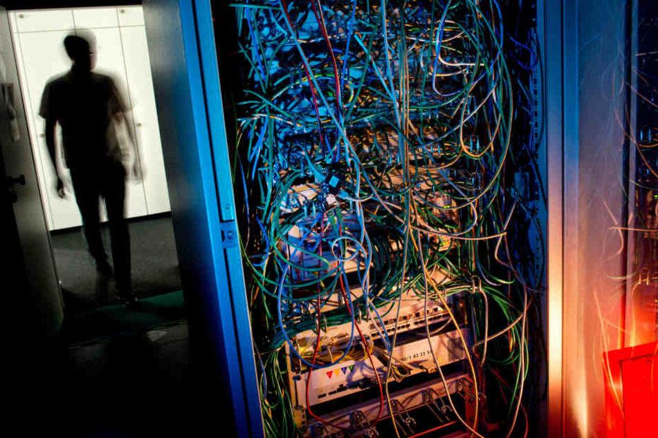 Fast so wertvoll wie ein randvoller Geld-Tresor: Ein Serverschrank mit Netzwerkkabeln.