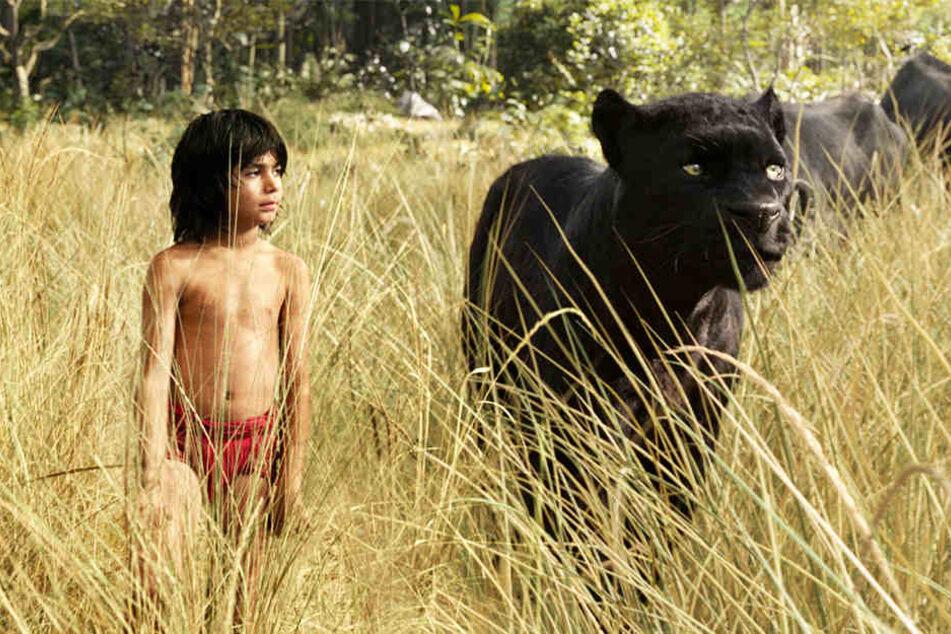 """Disney's """"The Jungle Book"""" gewann 2017 den """"Oscar"""" für seine bahnbrechenden Spezialeffekte."""