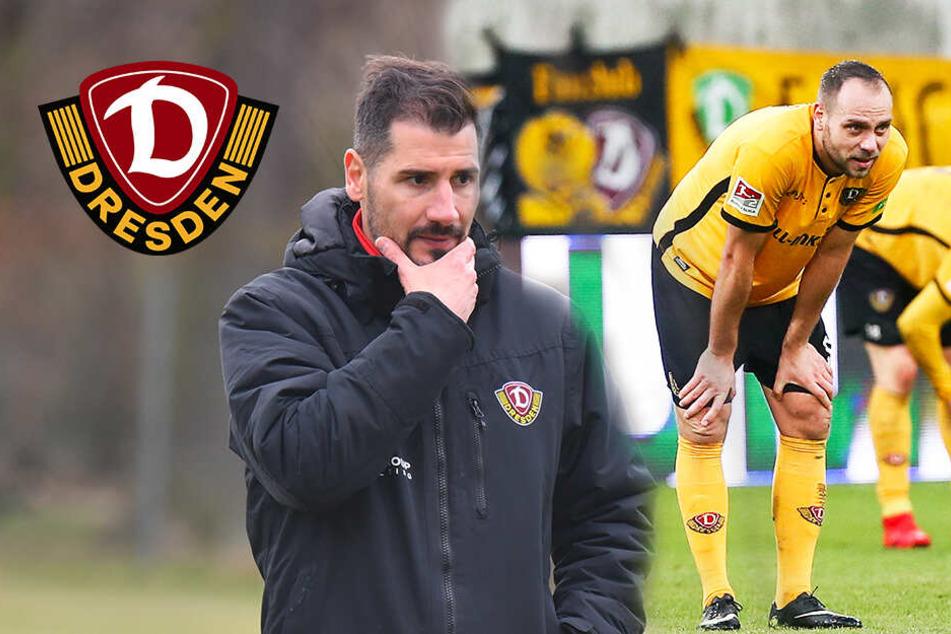 Probleme mit Dynamo-Coach Fielo? Benatelli erklärt seinen Wechsel
