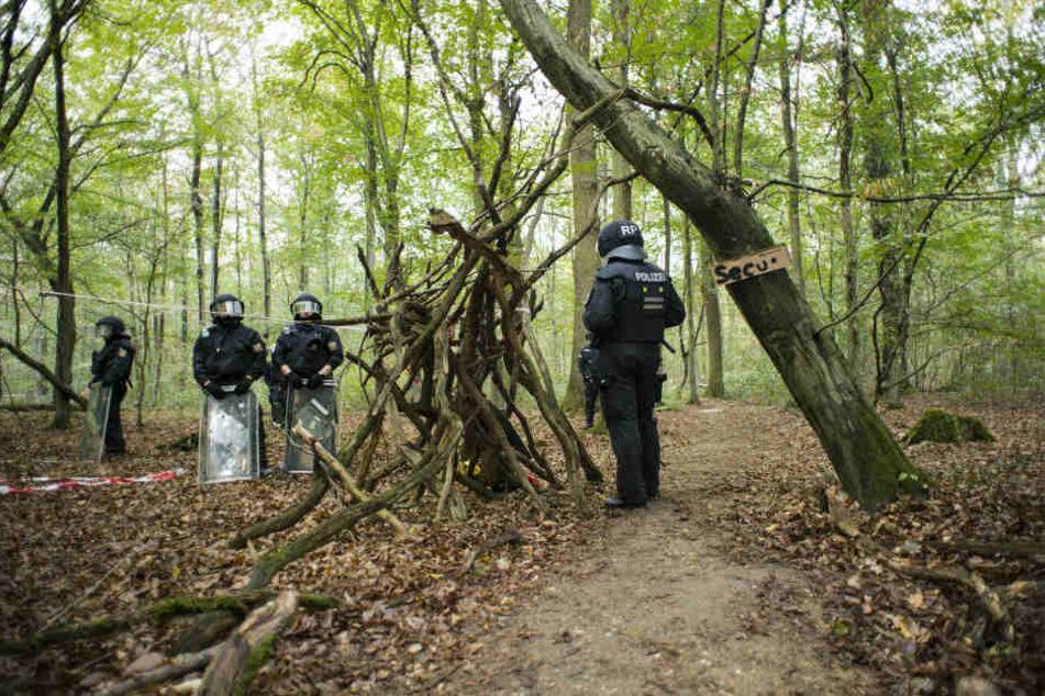 Die Polizei vor einem Jahr im Hambacher Forst.