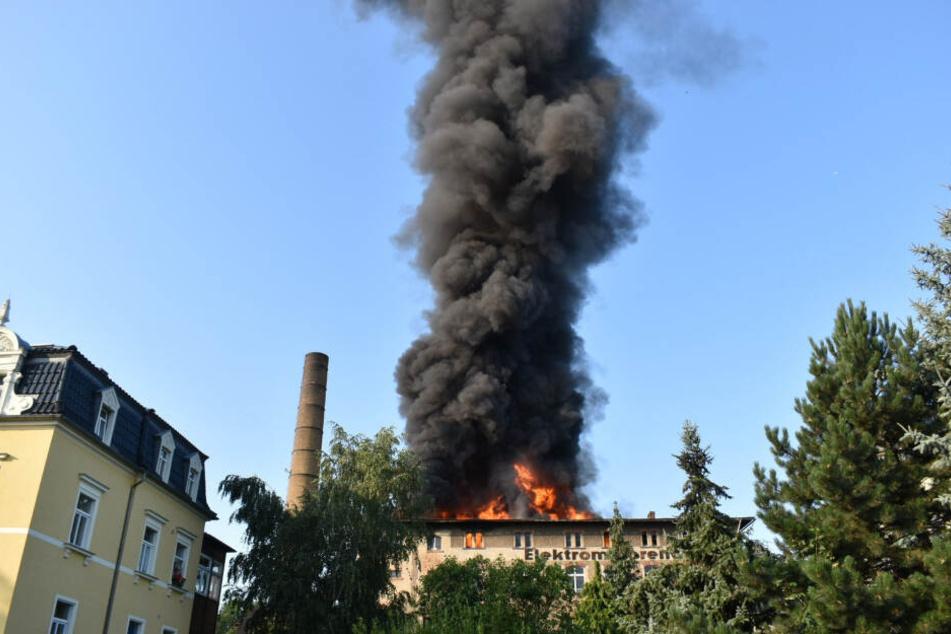 Die riesige Rauchsäule war über ganz Zittau zu sehen.