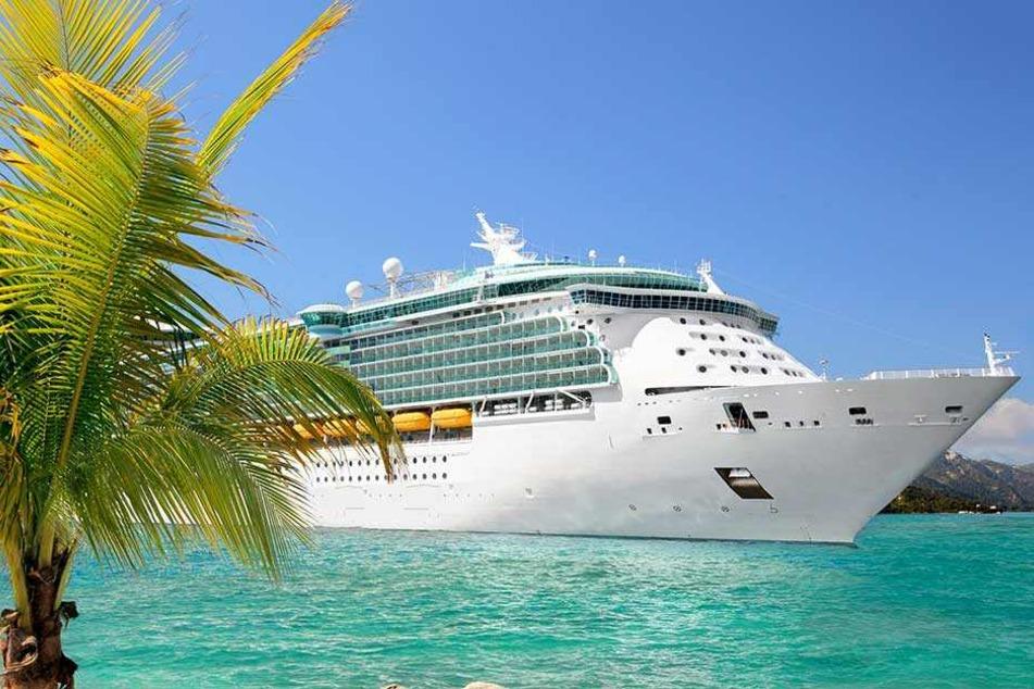 Auf Kreuzfahrtschiffen soll es zugehen, wie auf Uni-Parties: Abschleppen garantiert.