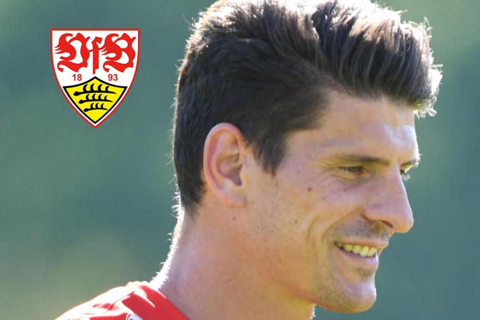 VfB-Star Mario Gomez ist fit: Trainer Walter hat die Qual der Wahl