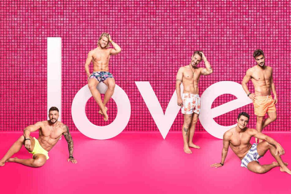 """""""Love Island"""": Diese Männer suchen bei der RTL2-Show ihr Traum-Date"""