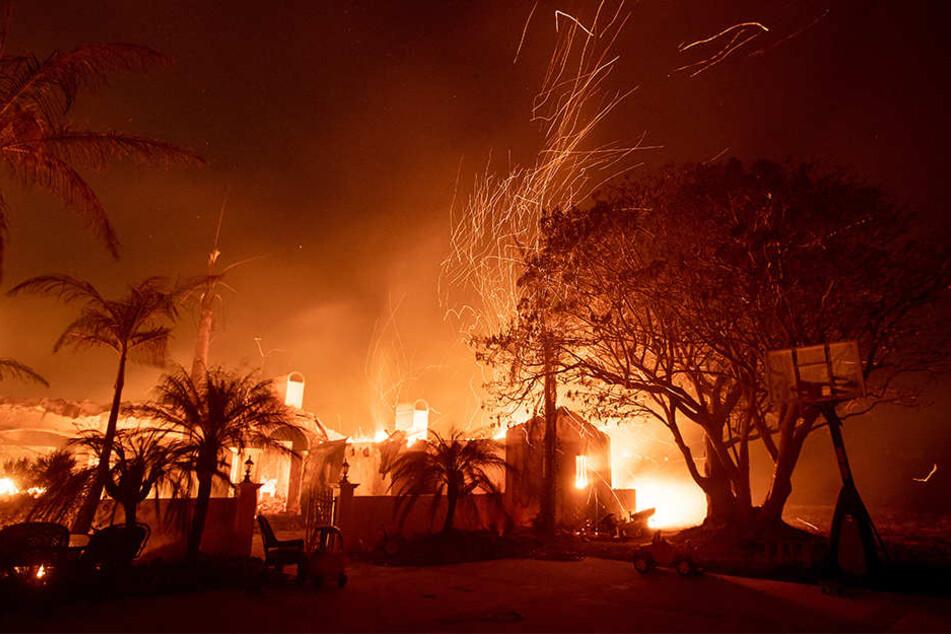 Mehrere Häuser sind von den Buschbränden im Norden Kaliforniens zerstört worden.