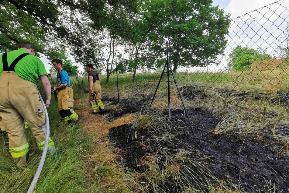 Die Kameraden der Feuerwehr brachten den Vegetationsbrand schnell unter Kontrolle.