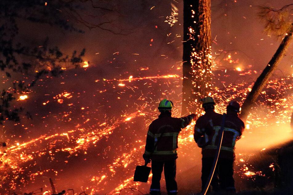 Feuer-Katastrophe in Frankreich: Hunderte Menschen evakuiert