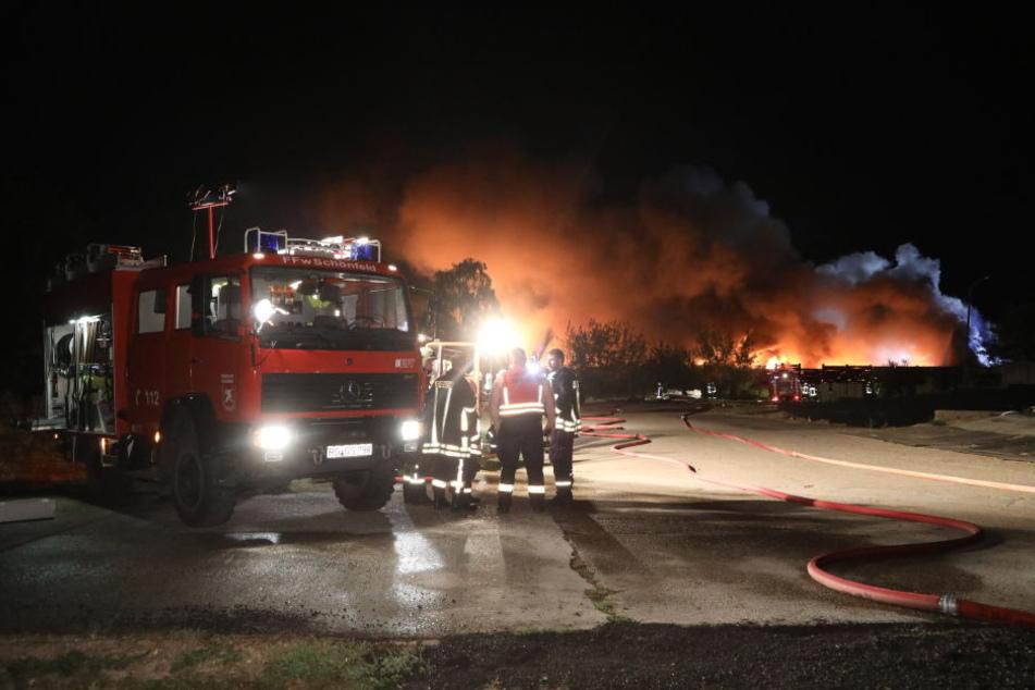 Beim Brand der Recyclinganlage bei Quersa im Landkreis Meißen lodern meterhohe Flammen.
