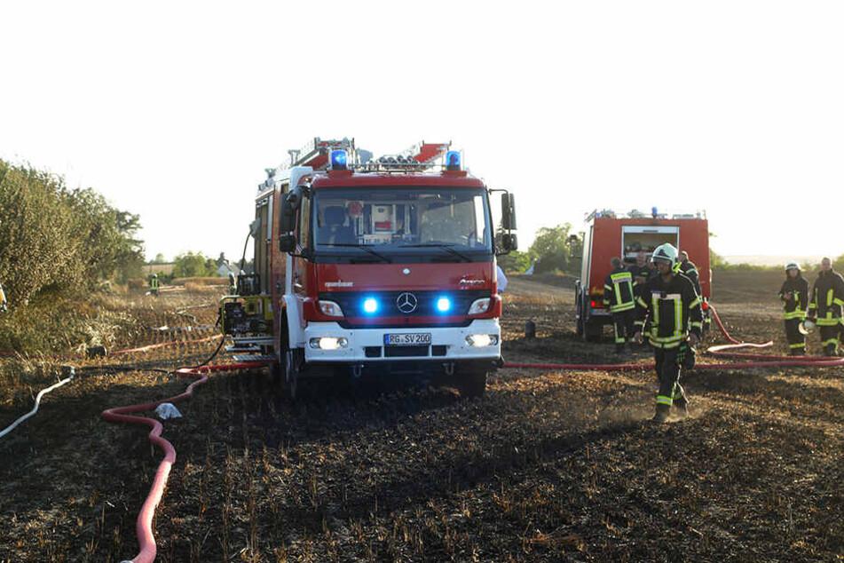 Bis an die Hecken der Bewohner drang der Brand vor.
