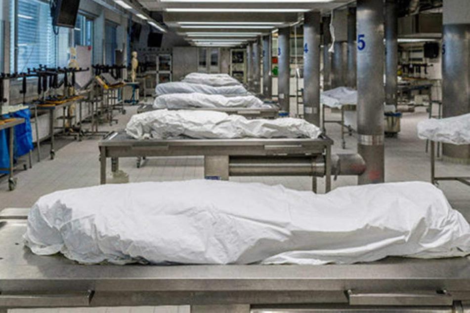Im Präparationssaal am Institut für Anatomie liegen die Körperspender schon bereit fürs neue Semester.
