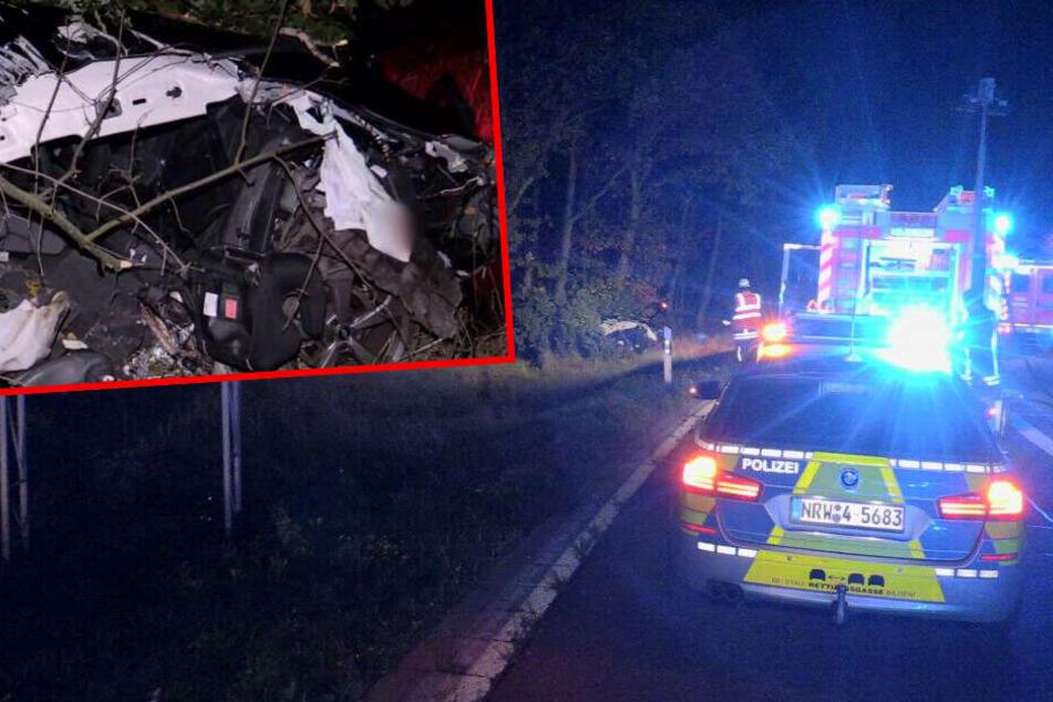 Audi kracht frontal gegen Baum: Fahrer sofort tot