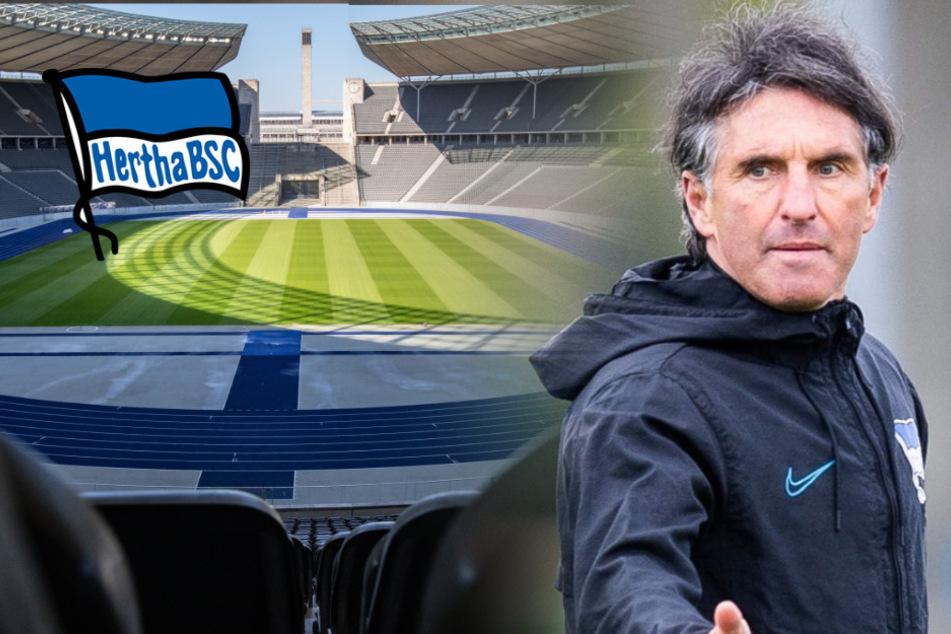 Berliner Geister-Derby: Das spricht für Hertha!
