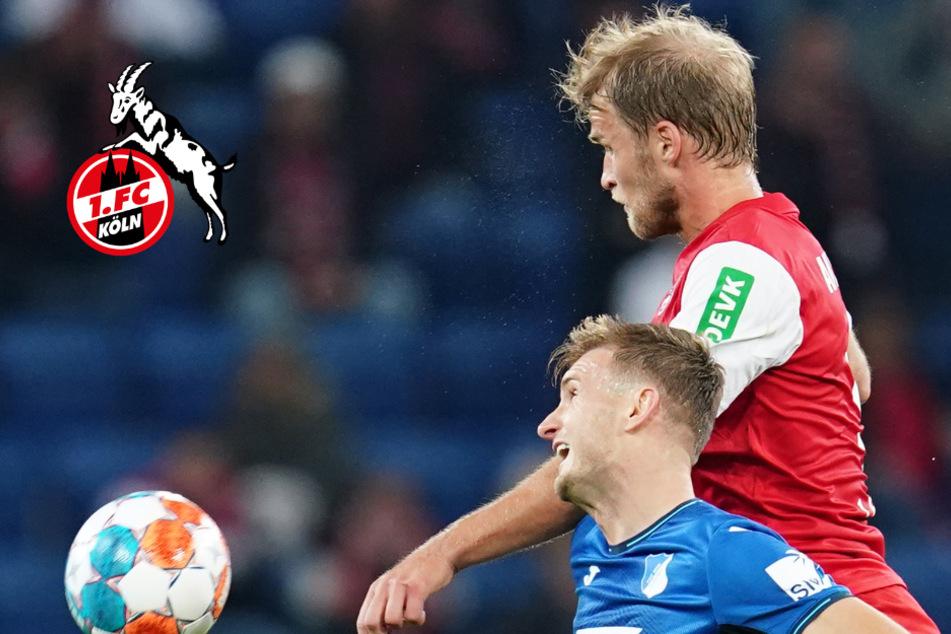 Hoffenheim-Schlappe des 1. FC Köln: Ein Trend oder Ausrutscher?