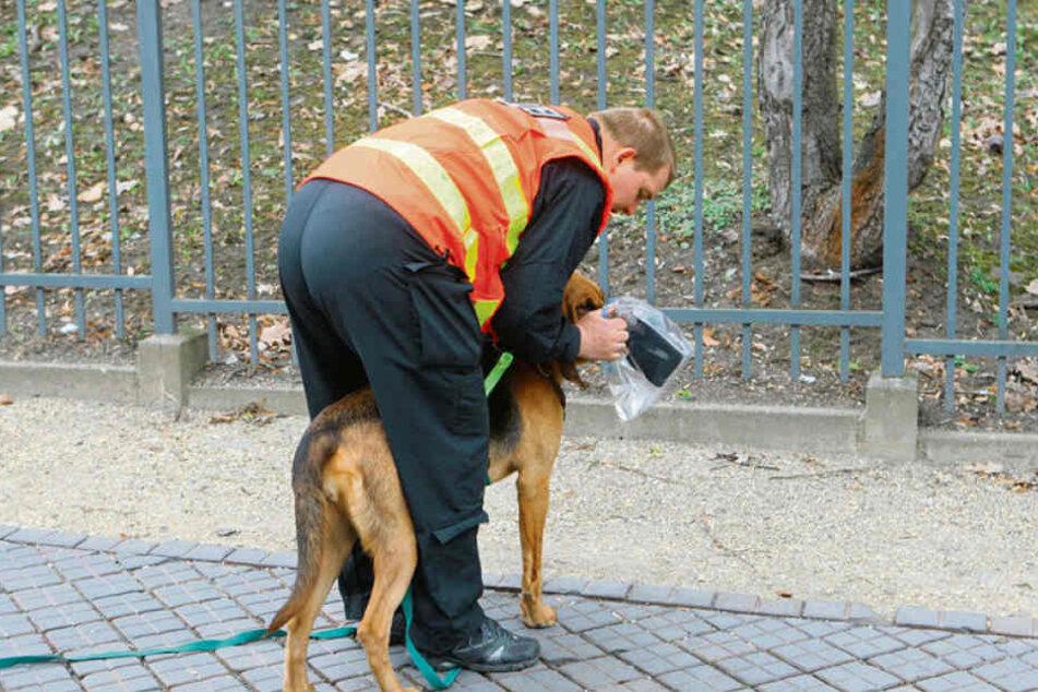 Zwei Studienteilnehmer: Mit seinem Bloodhound Hermine (7) folgt Polizeihauptmeister Ralf Blechschmidt (45) einer DNA-Spur.