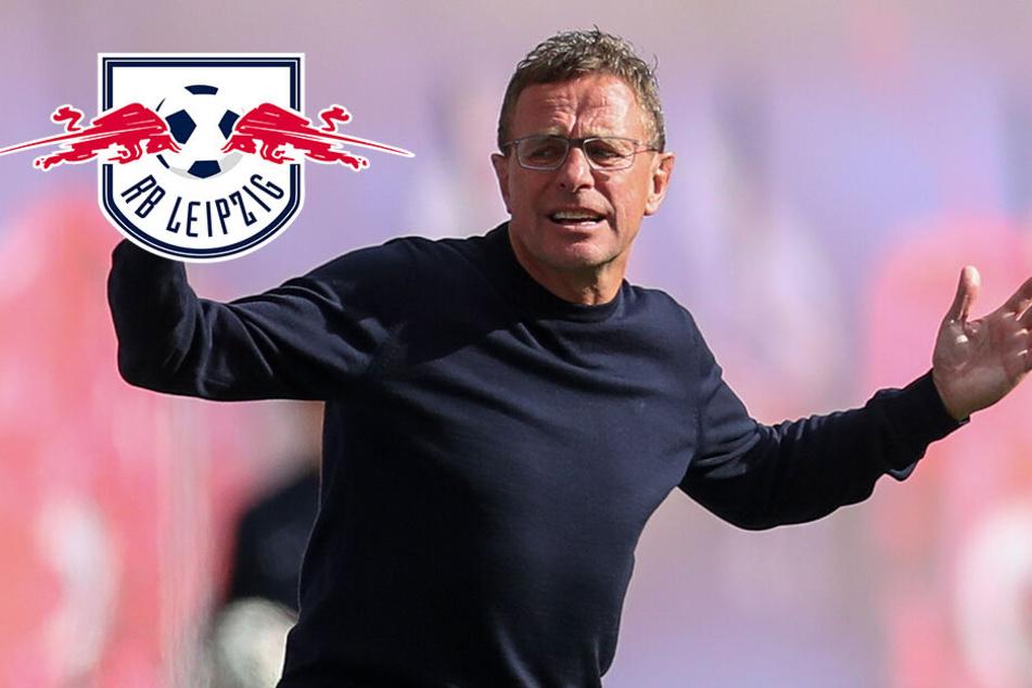 """RB Leipzigs Coach Rangnick schimpft über Schiri: """"Krasse Fehlentscheidung!"""""""