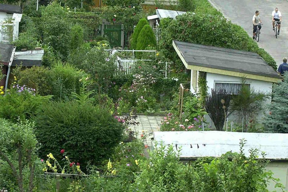 In einer Kleingartenanlage in Möckern kam es zu einem Todesfall. Die Ursache muss nun geklärt werden (Symbolbild).