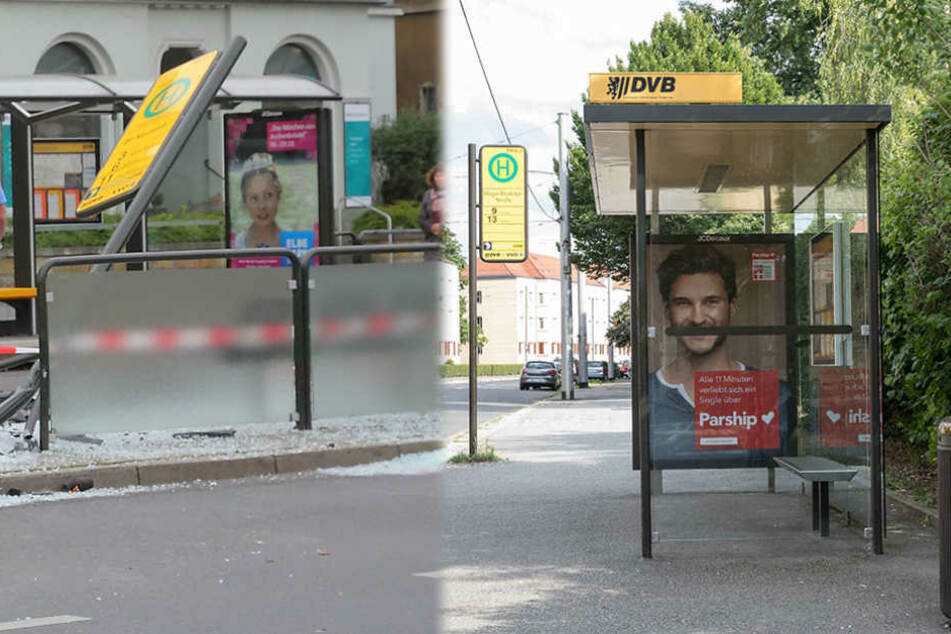 Sinnloser Vandalismus! Wer zerstört DVB-Haltestellen?