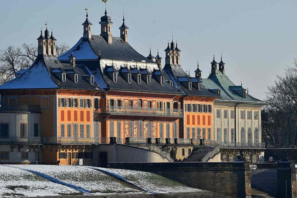 Besucherrückgang in Pillnitz. Wie kann man den Schlosspark im Winter wieder attraktiver machen?