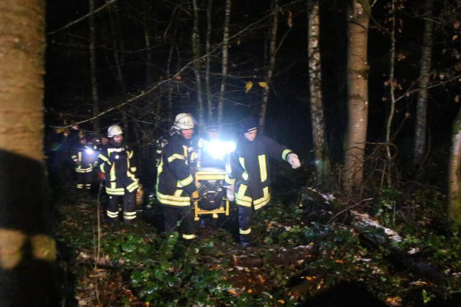 Feuerwehrleute bei ihrem Einsatz in dem Waldstück.