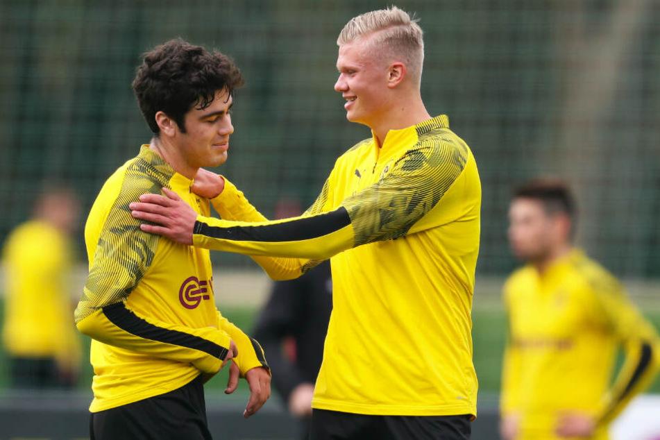 Giovanni Reyna (l.) und Erling Haaland könnten in Augsburg ihr Debüt für Borussia Dortmunds Profis feiern.