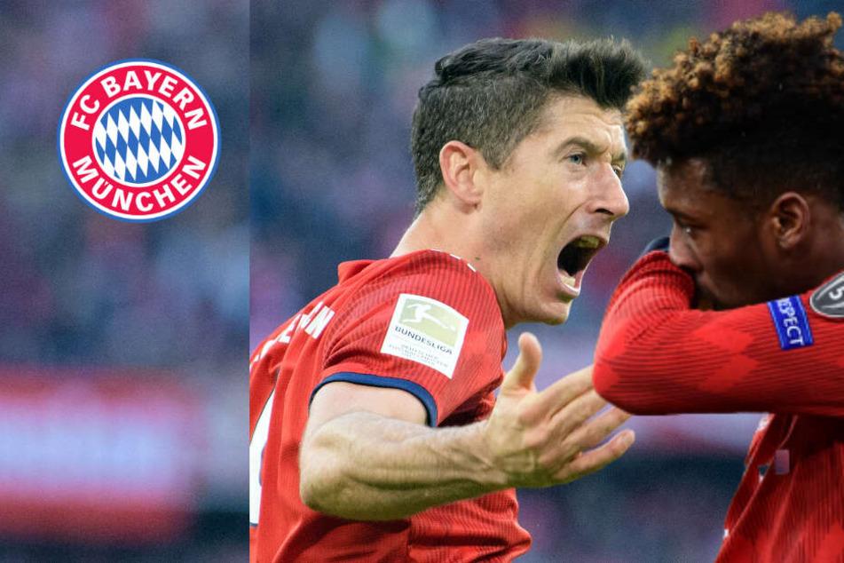 Eklat im Bayern-Training! Zwischen Lewandowski und Coman fliegen die Fäuste!