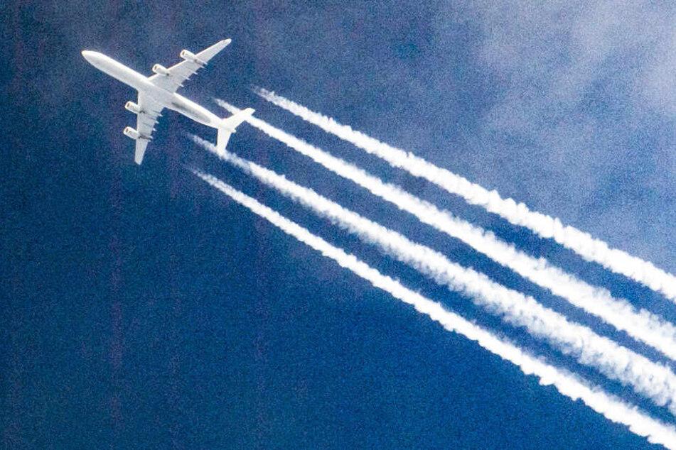 Ein Flugzeug am Himmel. (Symbolbild)