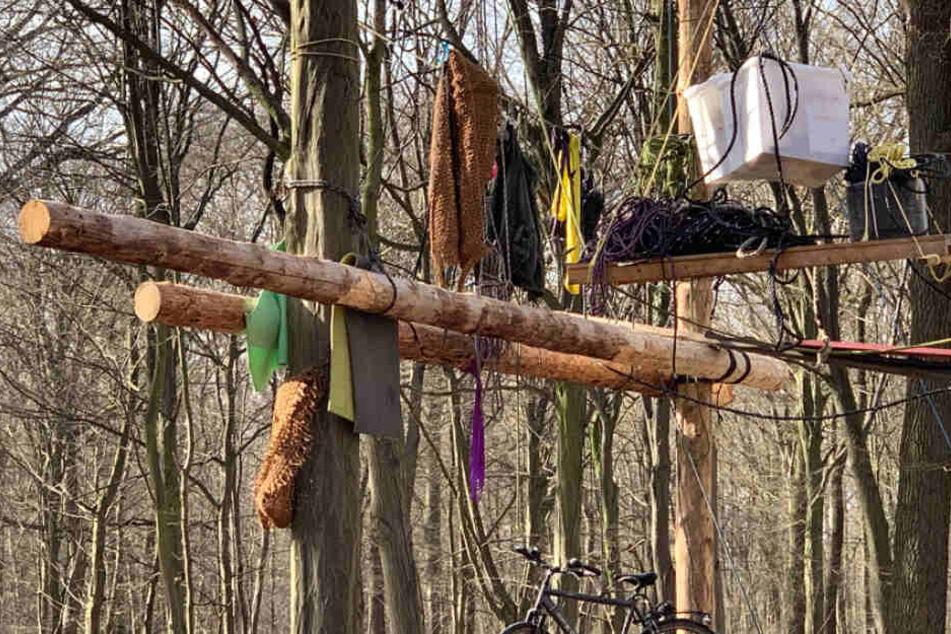 50 Bäume im Hambacher Forst gefällt! RWE stellt Strafanzeige