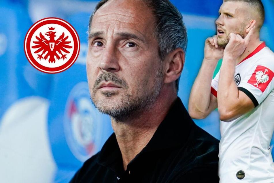 Eintracht ohne Dost ins wichtigste Spiel des Jahres: Wird Rebic zum Heilsbringer?