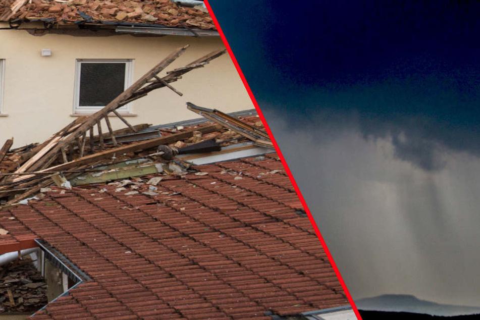 Wetterdienst warnt vor Orkan in Sachsen!