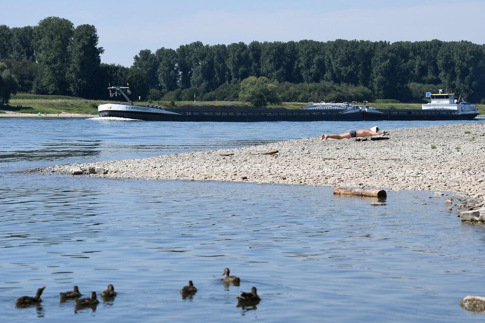 Ein Mann entspannt in der Hitze am Rhein.