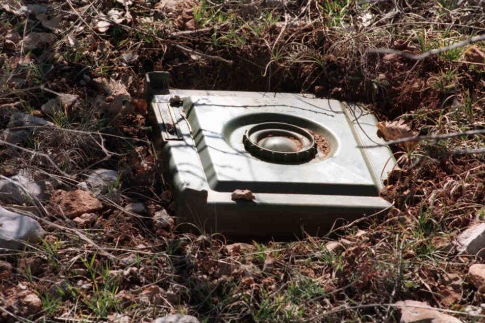 Eine freigelegte Landmine. (Symbolbild)