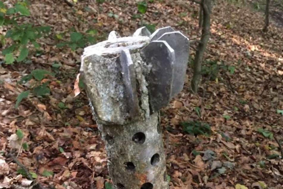 Mitten im Wald fand die 52-Jährige eine Granate in einem Baum. Gefährlich?