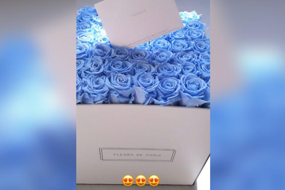 Der Schauspieler überraschte seine Liebste mit einem Bund blauer Rosen.