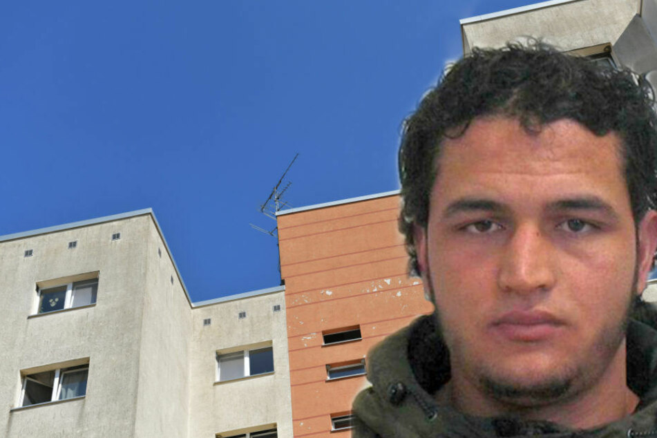 Festgenommener Islamist: Komplize hatte Kontakt zu Anis Amri