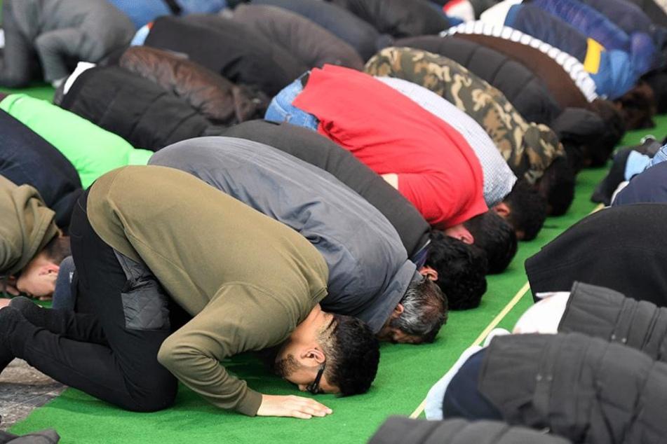Europäer fürchten, dass die Muslime in einigen Jahren in der Mehrheit sein könnten.
