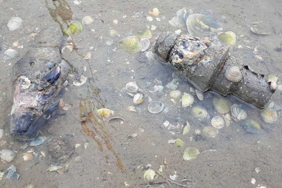 Diese Überreste des Zweiten Weltkriegs lagen im Wattenmeer.