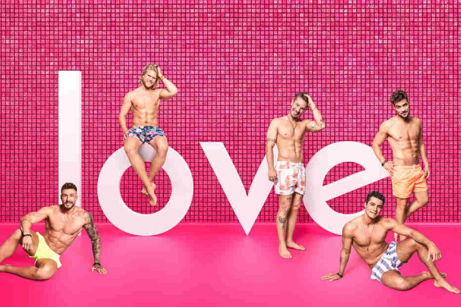 Diese fünf Männer sind auf der Suche nach der großen Liebe. Werden sie sie auf Mallorca finden?
