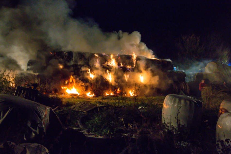 Rund 30 Strohballen hatten Feuer gefangen.