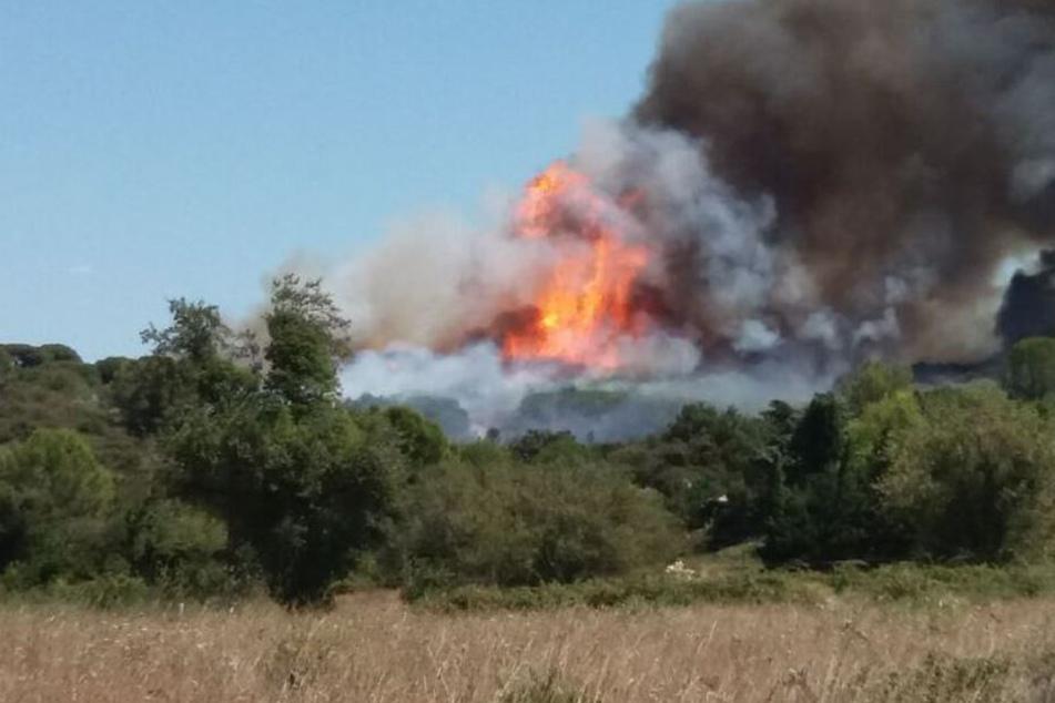 In der Gemeinde Générac, rund 50 Kilometer nordöstlich von Montpellier, ist es zu einem tödlichen Flugzeugunglück gekommen.