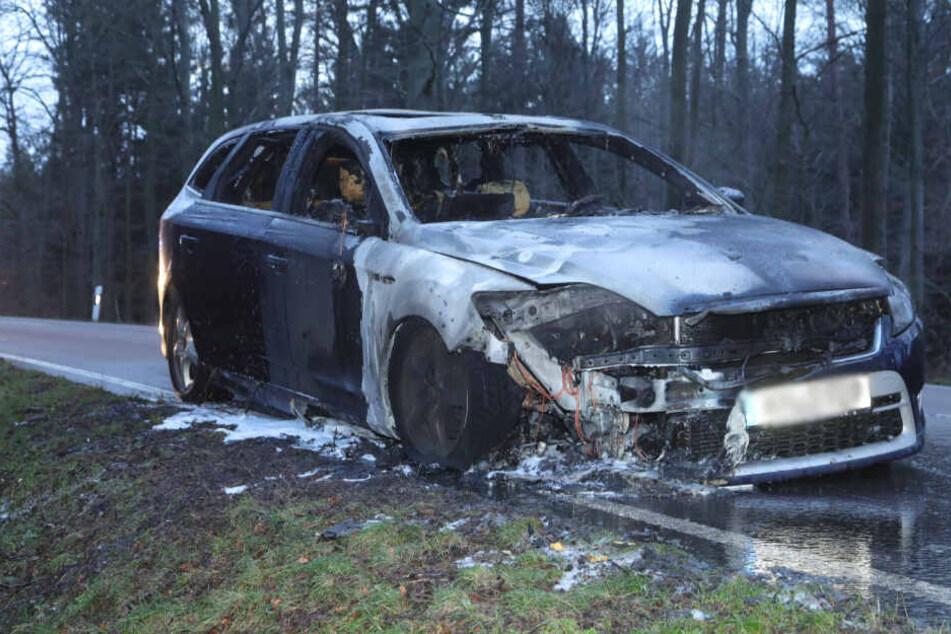 Dresden: Ford-Fahrerin fährt durch Dresdner Heide, plötzlich fängt ihr Wagen Feuer
