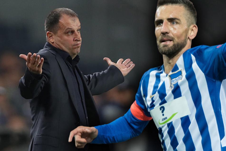 Sieg für Hoffenheim, Berlin und Köln verlieren