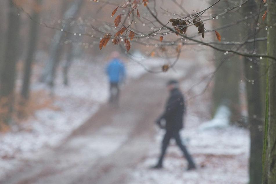 Während des Spaziergangs wurde der Mann auf den Sack aufmerksam. (Symbolbild)
