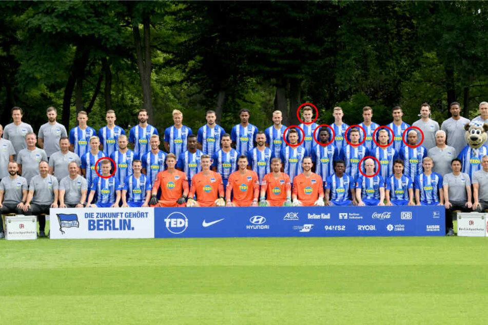Bei Hertha BSC stehen acht deutsche Nationalspieler im Profikader. Maximilian Mittelstädt, Dennis Jastrzembski, Sidney Friede, Arne Maier, Florian Baak, Jordan Torunarigha, Niklas Stark und Patrick Klünter.