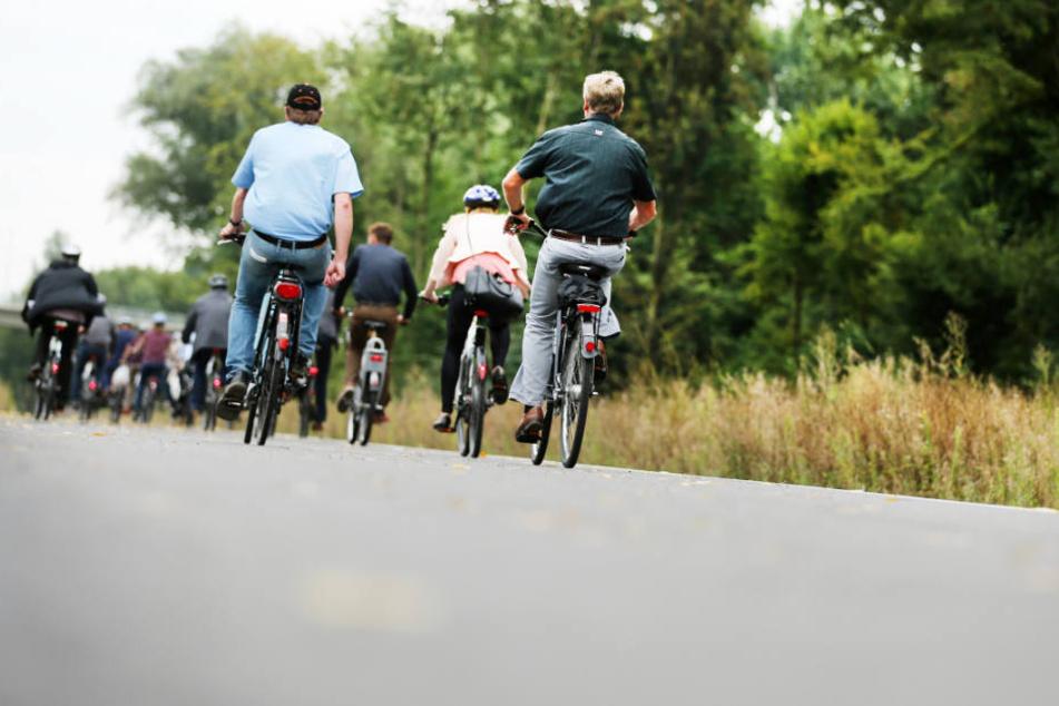Im Ruhrgebiet gibt es mit dem RS1 einen Radschnellweg. In der Metropolregion Hamburg soll es bald ähnliche Wege geben.