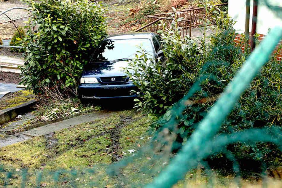Die Suzuki-Fahrerin musste ins Krankenhaus, nachdem sie die Böschung der Gärtnerei hinab fuhr.