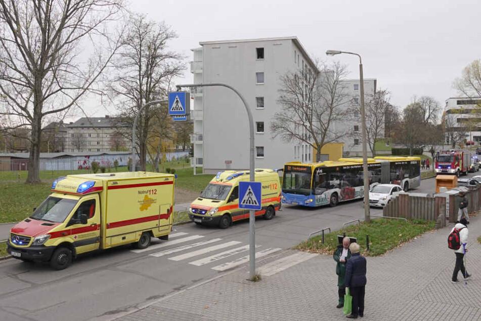 An diesem Zebrastreifen musste der Bus plötzlich bremsen.